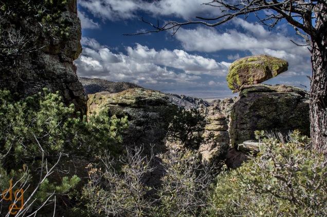 Chiracahua National Monument-7