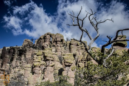 Chiracahua National Monument-9