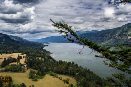 Columbia River Near Vancouver