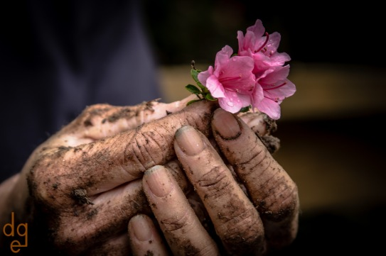 Dirty Hands and Flower
