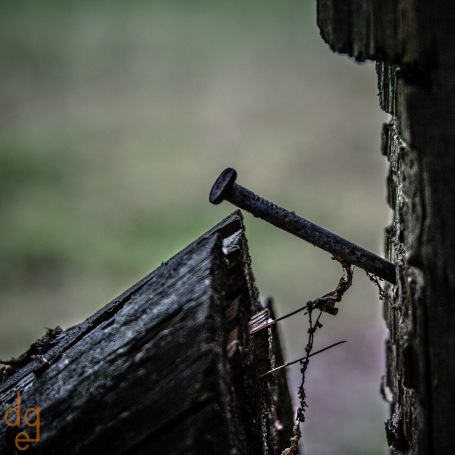 McDaniel-Farm-Park-Fence-and-Nail