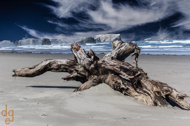 Oregon Coastline