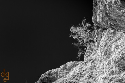 Javelina Rocks area in Saguaro National Park, East. Tucson, AZ.