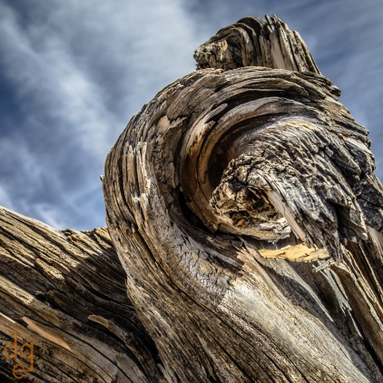 Windy Point Abstract